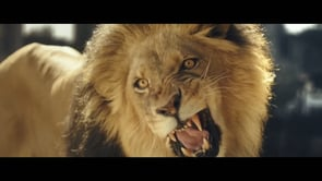 MW-Magnum-Animals